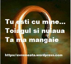 toiagul Tau -300x270